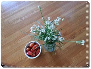 ミニトマト(アイコ)とニラの収穫