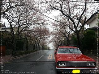 kamakura_2013-04-02 15.31.44.jpg